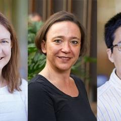 Professor Lianzhou Wang from the School of Chemical Engineering (pictured right) has been awarded $3.18m over five years for his next-generation solar technology research.
